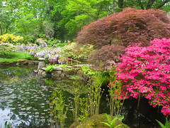 Japanse tuin, Den Haag (ekenitr) Tags: park tree denhaag shrub thehague clingendael japansetuin japansegarden ekenitr