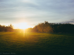 Sunset in park (prashans.mistry) Tags: park trees sunset summer sky sun toronto green beautiful clouds garden evening spring awesome rays
