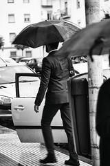 No hace falta correr (Mathias Bra) Tags: blancoynegro lluvia social paraguas semanasanta