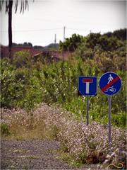 Naturamaggio2016DSC_0044-20160515 (Gianluigi Pintus Photography) Tags: nikon cartello pista ciclabile divieto d90