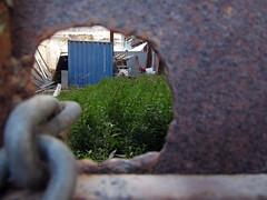 peeping tom (maximorgana) Tags: blue rusty chain container peepingtom trashbit streetsofcartagena