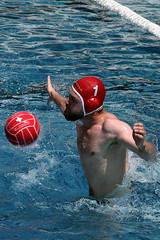 88_R.Varadi_R.Varadi (Robi33) Tags: summer men sports water swimming ball fight action basel swimmingpool watersports waterpolo sportspool waterpolochampionship