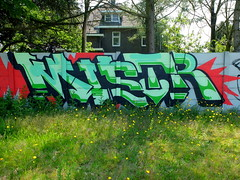 Graffiti (oerendhard1) Tags: urban streetart art graffiti eindhoven vandalism mister mistr
