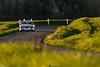 BMW 3.0CSL 1973 (Ugo Missana - www.ugomissana.fr) Tags: auto france car 30 race 2000 tour peter bmw oldcar edition 1973 csl ancienne optic anciennes 30csl 2016 peterauto wwwugomissanafr