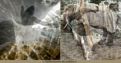 Important Difference (andrefromont/fernandomort) Tags: andrfromont andrefromontfernandomort fernandomort diptych diptyque meditation mditation elefant lphant jeflambeaux source