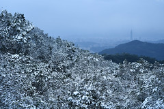 TaipeiSnow day (Iyhon Chiu) Tags: city winter mountain snow cold nature landscape snowy taiwan taipei taipei101        xindian 2016 101 sindian    newtaipeicity