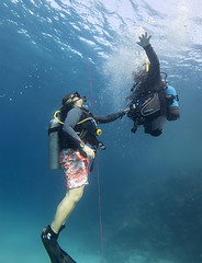 Andrew Searle and  Sharon El Shoura (KnyazevDA) Tags: sea underwater wheelchair scuba diving disabled diver padi undersea handicapped amputee disability