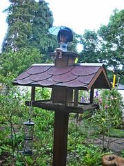 Mooooom... (Nina) Tags: rain umbrella garden doll outdoor blythe heathersky