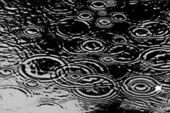 Rain and rain and rain (Peter Branger) Tags: bw water netherlands rain puddle blackwhite delft activeassignmentweekly bestofweek1 bestofweek2 bestofweek3 bestofweek4 bestofweek5 bestofweek6 canonef70200mmf28lisiiusm canoneos7dmarkii