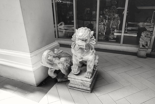 Dragon & Elephant