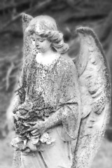 Llantysilio Angel (brainwavepictures) Tags: pictures life uk morning white black church monochrome cemetery grave graveyard field statue stone wales angel yard dead religious death fly wings europe heaven die european dof sweet britain religion north belief chapel monochromatic carving christian carve figure after british churchyard celtic christianity welsh figurine dying heavens winged celt heavenly depth llangollen statuette mortal mortality brainwave llantysilio