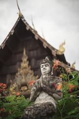 * (doistrakh) Tags: travel thailand asia dof bokeh sony chiangmai digitalcamera fullframe voigtländer 泰國 milc 清邁 minoltamrokkor40mmf2 watphantao lensadapterring a7s mirrorlessinterchangeablelenscamera replichrome alpha7s ilce7s