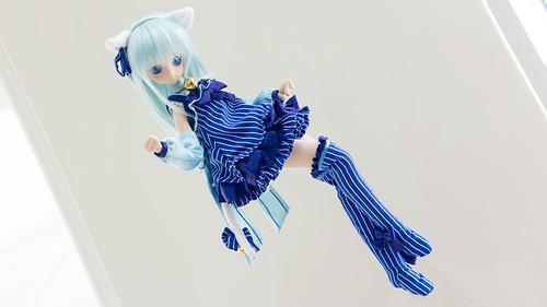 Flying Blue Cat