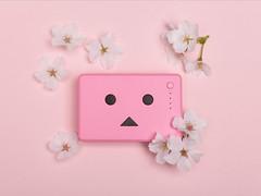 Sakura (Cherry Blossom) Danboard Battery (Arielle.Nadel) Tags: yotsuba danbo danboard cheero