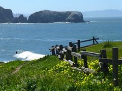 4/5/16 10:19 (joncosner) Tags: california marin marinheadlands northbay rodeobeach ggnra 2016 stars2