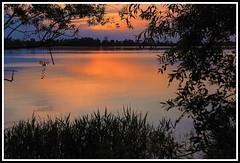 Crpuscule sur la Garonne (Les photos de LN) Tags: sunset nature lumire couleurs beaut soir garonne reflets fleuve vgtation nuances srnit aquitaine