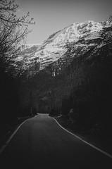 (nuriapase) Tags: blackandwhite naturaleza snow mountains nature landscape nieve natura paisaje neu montaas pirineos blancinegre paisatge pyrinees muntanyes arag monocrom vallpineta
