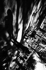 Santiago de Chile (Alejandro Bonilla) Tags: chile street city santiago urban blackandwhite bw black blancoynegro monocromo calle sam sony ciudad bn u urbana urbano santiagodechile urbe santiagochile santiagocentro monocromatico santiaguinos sonya290
