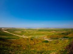 de_slufter (Joerg Esper) Tags: color nature colors landscape natur 9 olympus nl landschaft farbe texel noordholland farben niederlande decocksdorp deslufter olympusomdem1 bcl0980 olympusbcl0980 olympusbodycaplens9mm180