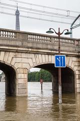 Voies (Not-the-average-Joe) Tags: paris france mississippi eiffeltower floods overflow crue riverseine
