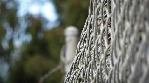 Bulgy Fence
