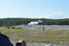 Lion geyser, Yellowstone (David A's Photos) Tags: lion yellowstonenationalpark wyoming geyser yellowstonetrip uppergeyserbasin geyserhill