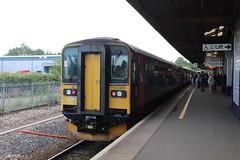 153305 (matty10120) Tags: dog train box railway class devon newton abbot 153 sprinter
