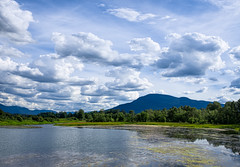 Nicomen Slough (martincarlisle) Tags: trees sky canada water clouds britishcolumbia fraserriver fraservalley deroche sloughs nicomenslough photoninja niksoftware pentaxians tamronlenses colourefex pentaxart pentaxk5