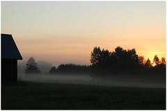 Juhannusy / A Midsummer Night's Dream (Mina von M) Tags: maaseutu idylli finland countryside fields 2016 summer night morning light summerlight pellot juhannus aamu aamuvalo kesy maisema landscape midsummernight keskuu june