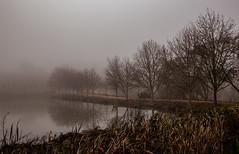 IMG_1547 surfaces (francois f swanepoel) Tags: fock fog grabouw highlands mirror mis mist nature reflection refleksie spielbeeld weerkaatsing surfaces