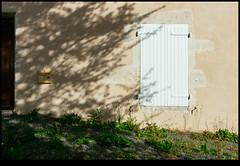 160611-8233-XM1.jpg (hopeless128) Tags: france shadows eurotrip wall tree 2016 shutters nanteuilenvalle aquitainelimousinpoitoucharen aquitainelimousinpoitoucharentes fr