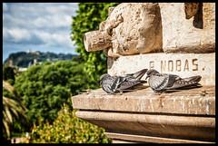 Barcelona (tomekwysocki) Tags: barcelona travel red photography spain nikon espana 1750 28 d200 tamron spa esp hiszpania