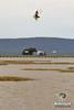 lagunasecakite8 (Kitesurf Vacation Mexico) Tags: guadalajara kiteboarding kitesurfing laguna seca sayula saltos lagunasanmarcos