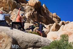 Yoga poses, activate! (MacysPhotography) Tags: california ca camping tree forest joshua joshuatree climbing national rockclimbing jtree thegreatoutdoors joshatree joshuatreenationalforest rei1440project rei1440 reiyayday reipv56 reilove