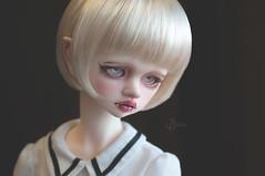 Delphine update (T e s l a) Tags: dim bellosse