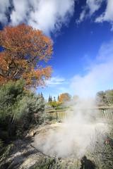 Autumn in Rotorua (Magryciak) Tags: park blue autumn newzealand sky colour tree fall canon eos rotorua steam geothermal mudpool hotpool 2015 explored