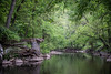 sanctuary (Steve VanSickle) Tags: park trees nature stone creek dc rockcreekpark day126 supports day126365 365the2015edition 3652015 6may15