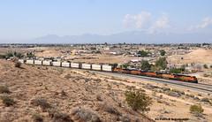 BNSF 7250,4583,7865,7481 und 8172 (vsoe) Tags: california railroad usa america train engine eisenbahn railway amerika bahn kalifornien lok züge