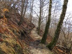 2016-032929 (bubbahop) Tags: switzerland hike locarno 2016 cardada europetrip33
