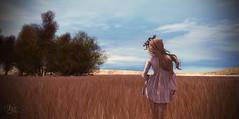 Friday's Solitude  (Vita Camino) Tags: life summer camino visit sl second romantic vita locations fiels slur firld sisit allirium