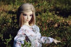 Spring Time (Calfuraay) Tags: lake sunshine spring doll skin outdoor ns twin sd wig cecilia bjd fl normal fairyland lockhart f60 lacrima fm60 feeple60 fantyfoo
