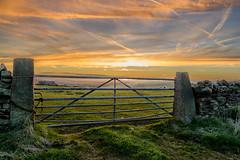 Sunset gate (rich01535) Tags: uk sunset england sun sunlight field landscape outdoors countryside nikon gate yorkshire country vivid orangesky walls fullframe d610 nikond610