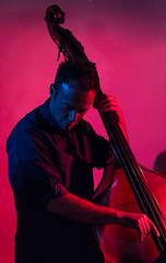 Red_Fish_Blue-2 (neil_kellie) Tags: music bass livemusic piano jazz doublebass