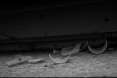 Zeugnis der Zerstrung (pov-Shots) Tags: blackandwhite broken break sw destroyed glas rhre scherben zerstrung leuchtstoffrhre schwarzweis