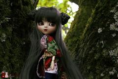 Depuis les arbres (Shamujinn) Tags: tree garden hair asian doll long gray chinese jardin siamese wig groove kimono pullip braids custom arbre custo poupe akoya siamoise nattes leeke leekeworld rewigged shamujinn