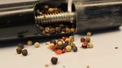 hot pepper ( mpg) Tags: hot macro closeup pepper tabletop hotpepper hotcold 52weeksthe2016edition mpg2016 week252016 weekstartingfridayjune172016
