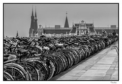 HOTI102014-443R-BYN_FLK (Valentin Andres) Tags: bw holland byn blancoynegro amsterdam bicycle blackwhite parking central thenetherlands aparcamiento bicicleta estacion holanda centraalstation