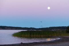 Beautiful Summer night (evisdotter) Tags: summer moon beach nature water birds night reflections sunsetlight mariehamn mnen land sommarnatt sooc lillaholmen 2250pm