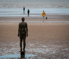 Another visit (Davescunningplan) Tags: sea people sculpture dog beach sand anthony gormley merseyside