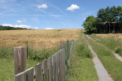 Sommerlandschaft (mellane.karin) Tags: summer field fence landscape sommer zaun landschaft